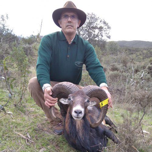 Muflão Posto 51. Caçador Pedro Ramos Rodrigues.